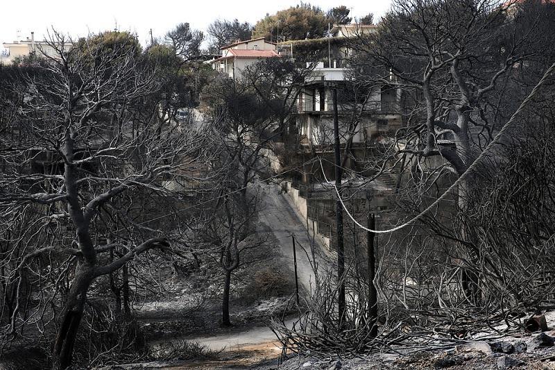 Вероятной причиной пожаров в Греции назван поджог