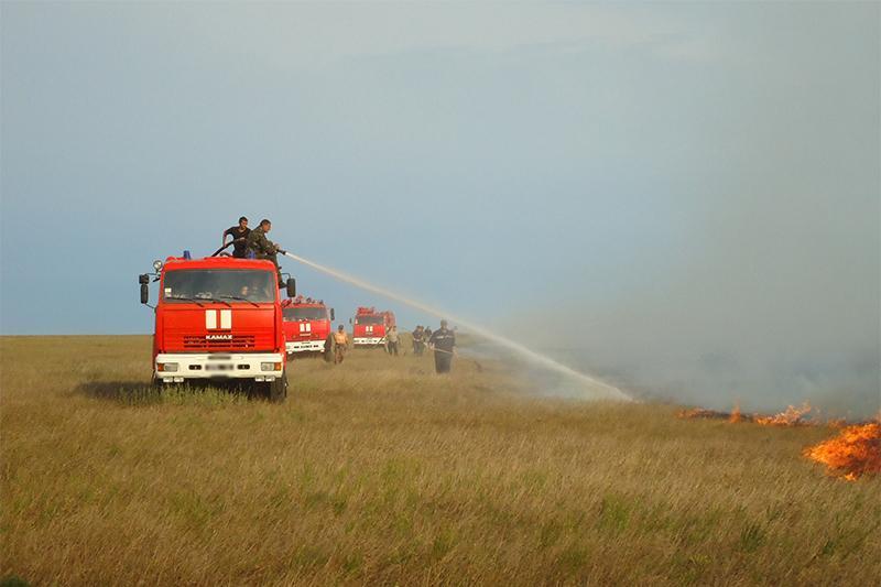 Четыре дня тушили горевший сухостой в Туркестанской области
