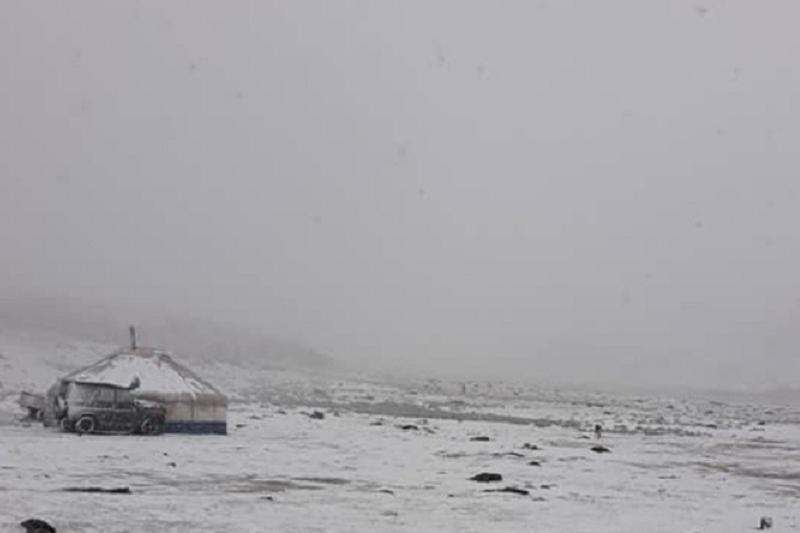 В самый разгар лета в Монголии выпал снег