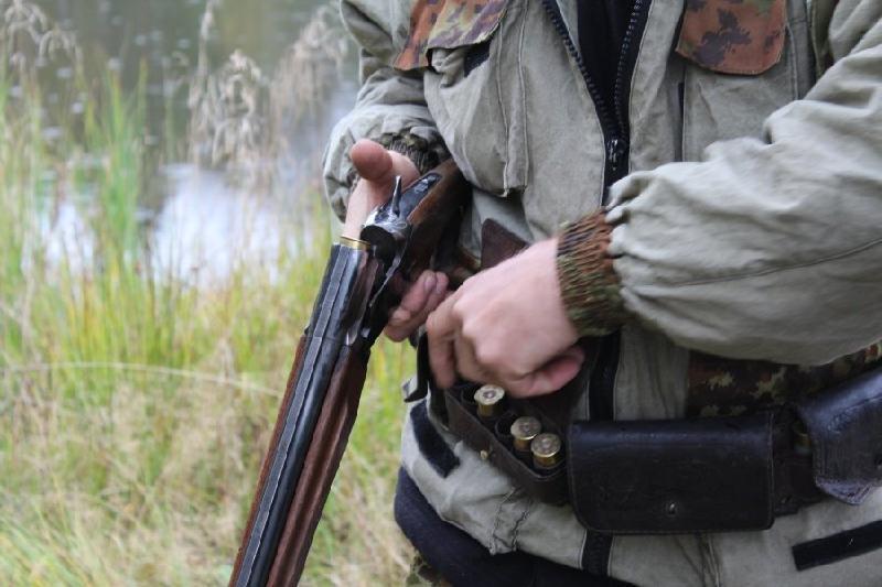 Охотившиеся на краснокнижного архара браконьеры задержаны в Туркестанской области