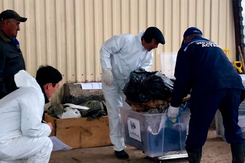 Astana scientists find alternative way of obtaining solid fuel