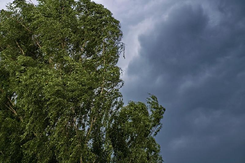 Усиление ветра на фоне жары ожидается в Атырауской области