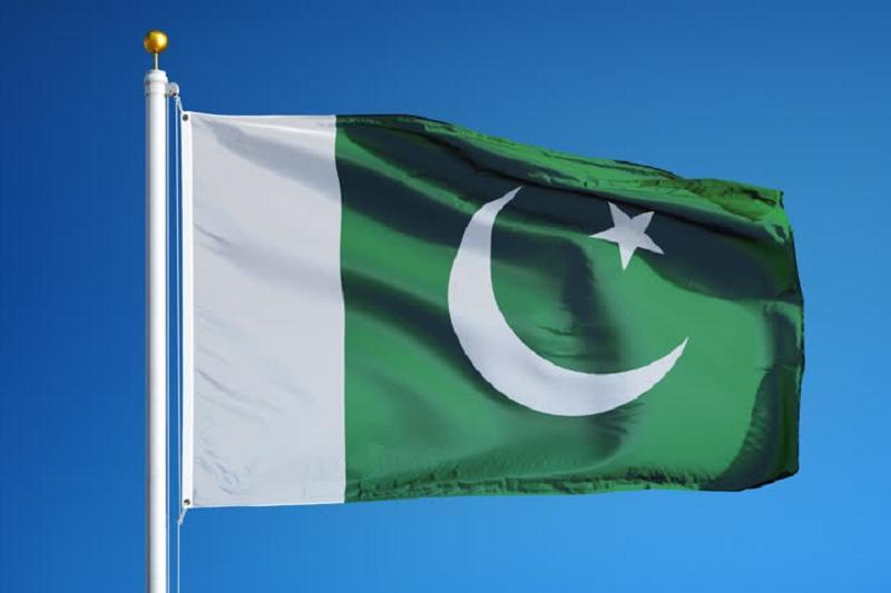 巴基斯坦下月初将举行总统选举