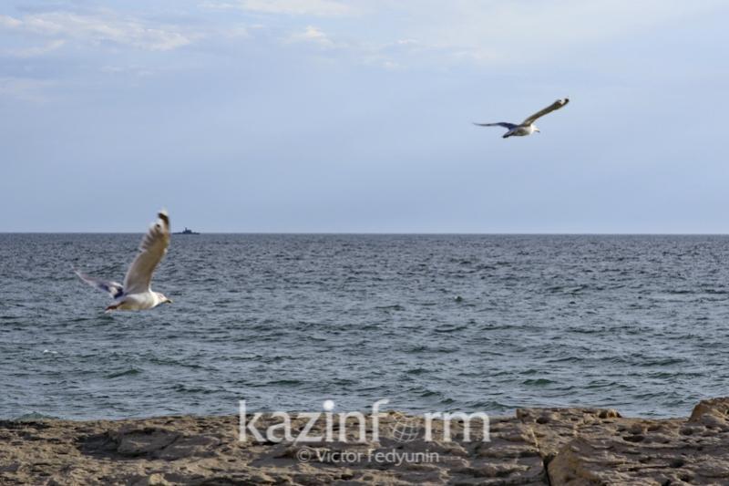 Каспий мен Қара теңізді жалғайтын су арнасы салына ма