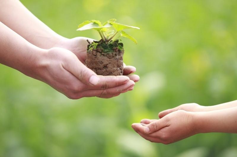 Меценаты помогают благоустроить район Акмолинской области