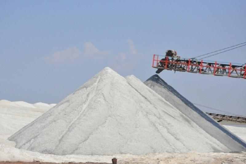 S Kazakhstan to build salt refinery