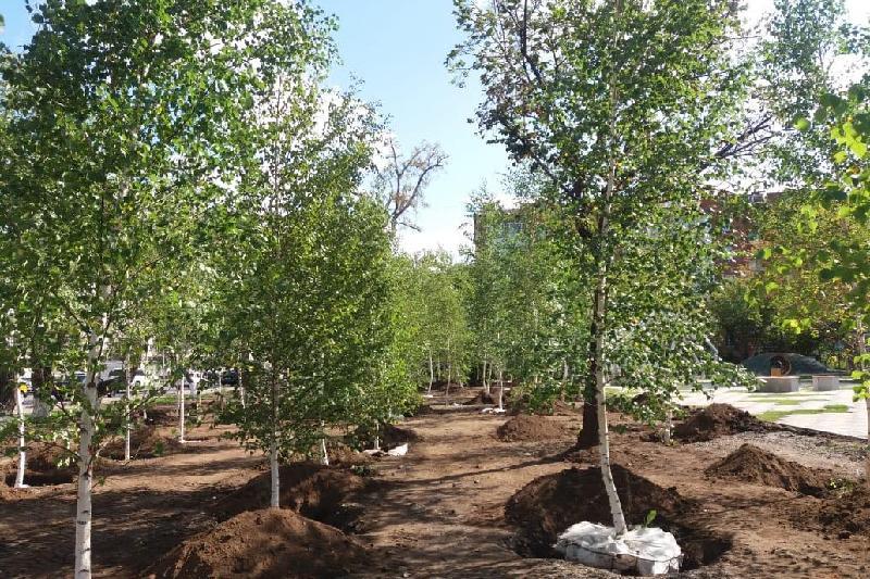 В Астане высадят березовую рощу