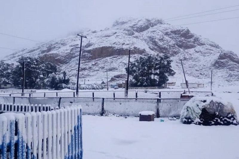 First snow falls in E Kazakhstan