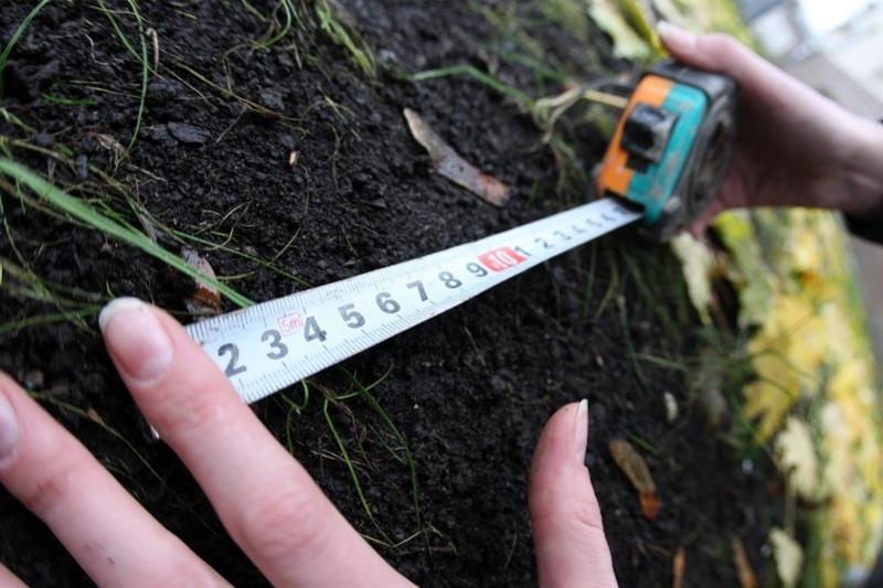 Землю без аукциона и торгов предоставляла земкомиссия в Павлодарской области