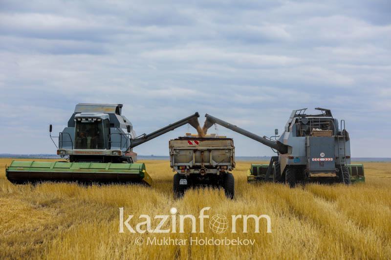 2018年北哈州油籽作物收获量接近100万吨