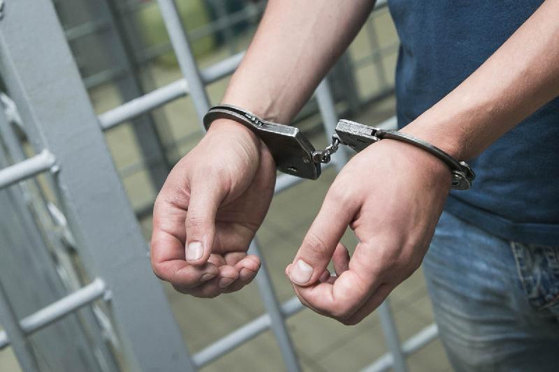 Полиция задержала подозреваемых в разбойных нападениях на жителей Кордайского района