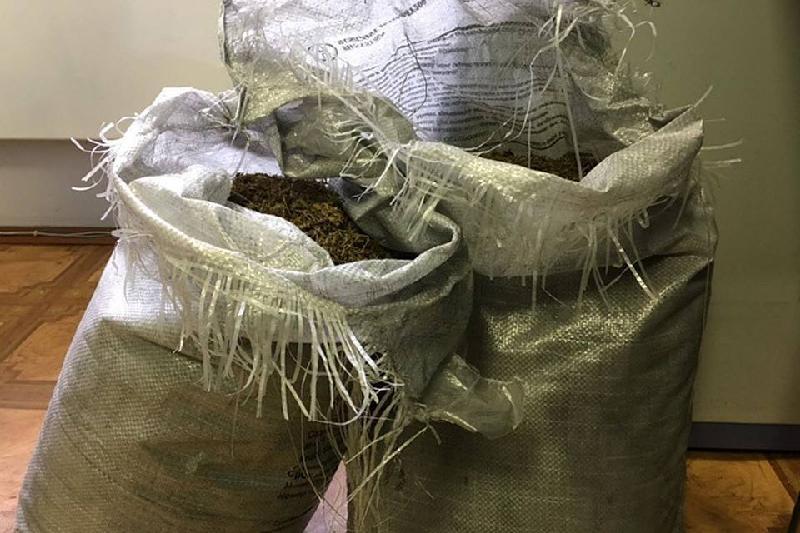 Алматы облысында автокөліктен 9 келіден астам есірткі тәркіленді