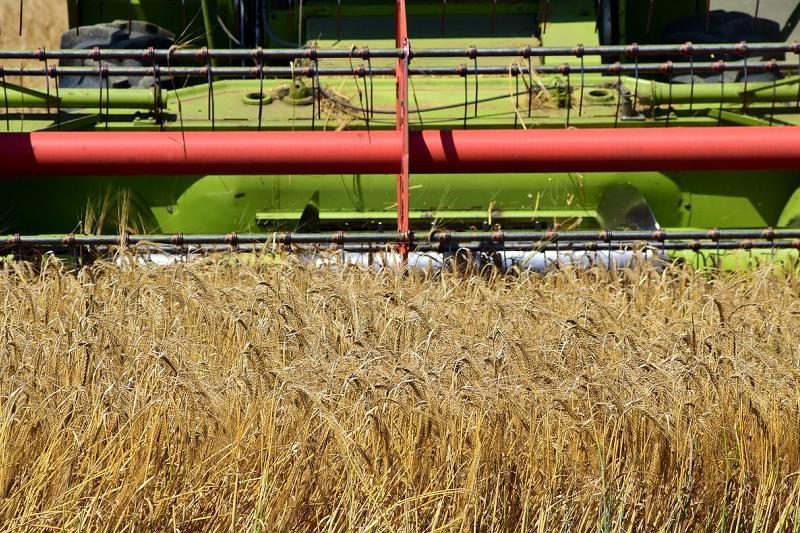Kazakhstani farmers harvested almost 14 tons of grain