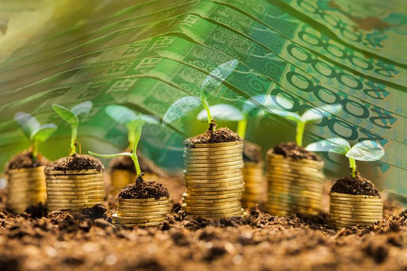 Инвестиции в сельское хозяйство выросли в Казахстане