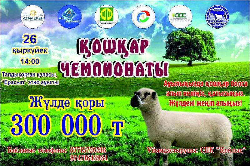 全国首届公羊大赛将在塔勒德库尔干市举行