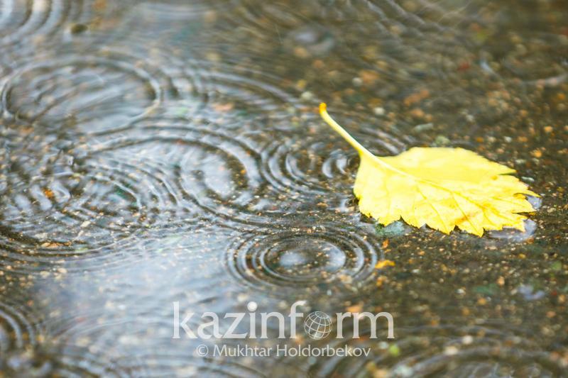 Дожди не приведут к наводнениям - глава КЧС