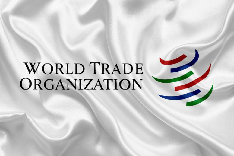 WTO downgrades global trade outlook as risks accumulate