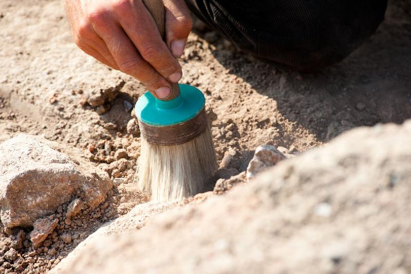 «Черные археологи» должны преследоваться по закону - Минкульт