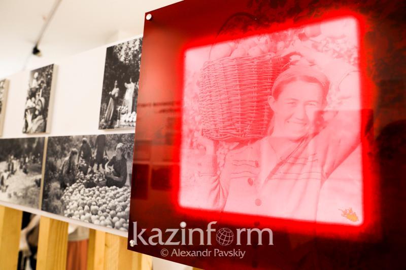 Музей яблока открылся в Алматы