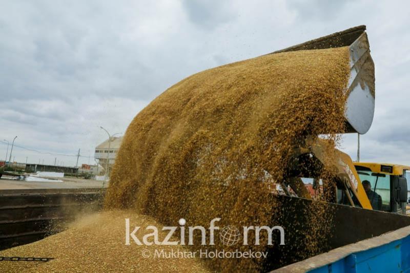 Qazaqstan Mysyrǵa astyq eksportyn qaıta jandandyrady