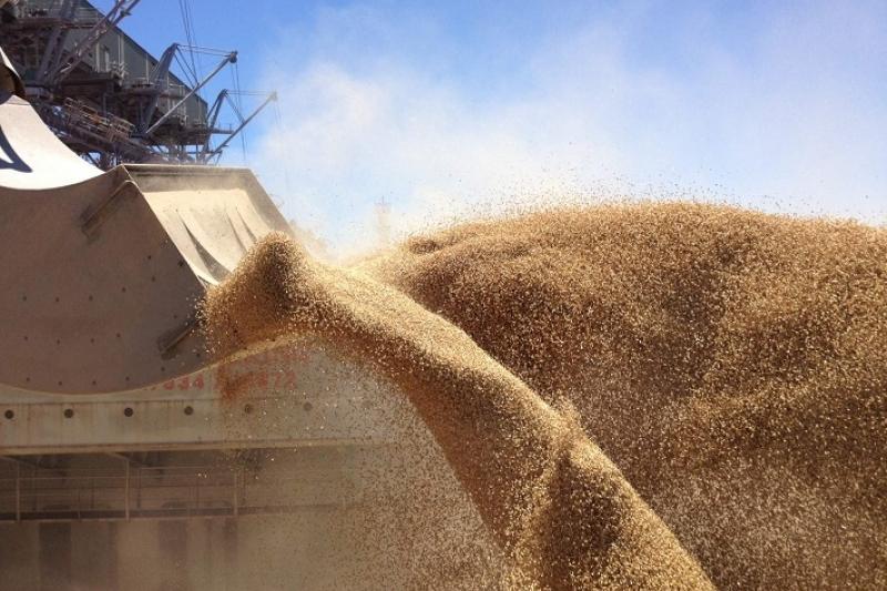 Почему Иран не снизил пошлину на импортируемую из РК пшеницу