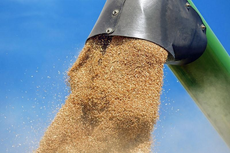 Kazakhstan harvests 22.1 mln tons of grain so far