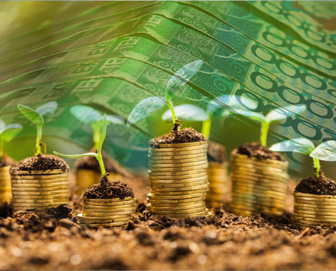 哈萨克斯坦将创建直接投资基金