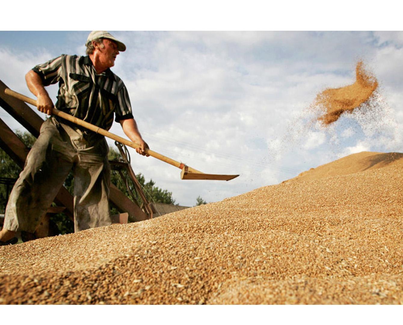 МСХ РК намерено поднять авторитет и статус сельхозработника