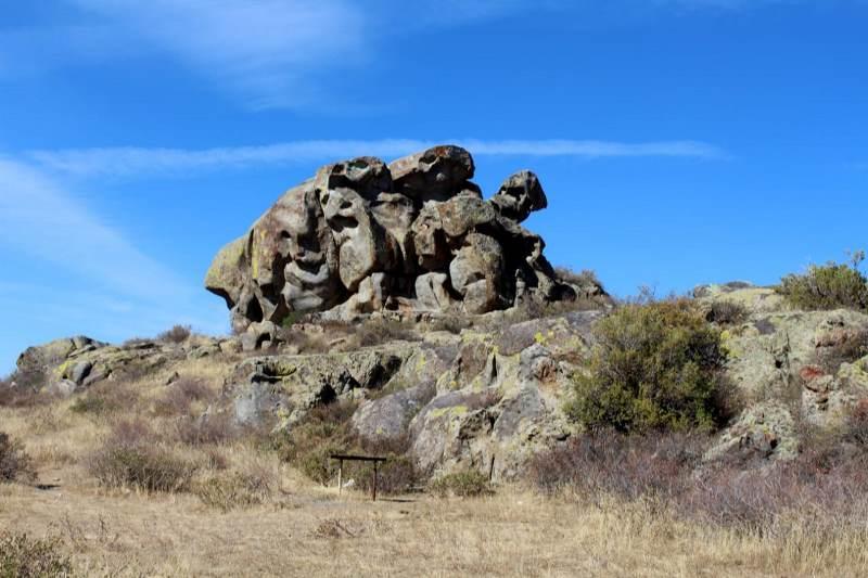 ШҚО-да «Тарбағатай» ұлттық паркі ашылды
