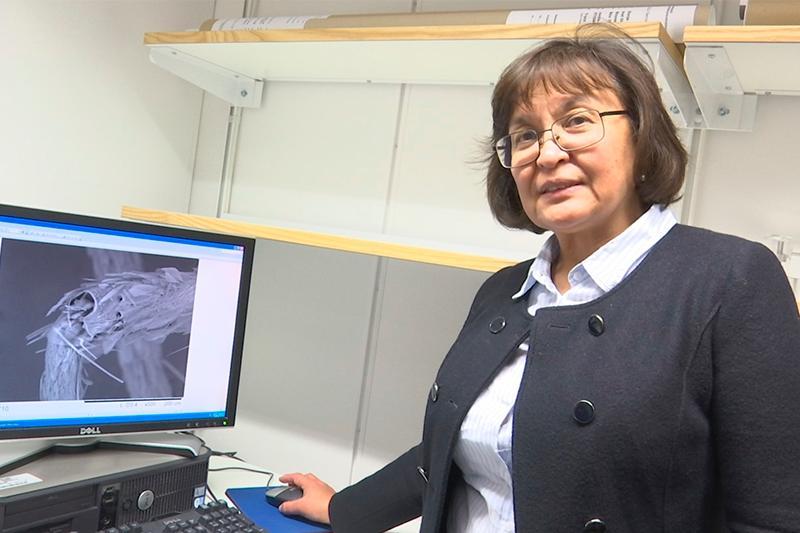 Как казашка-ученый в Швеции разработала экологически чистый метод очистки воды