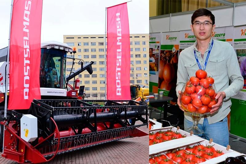 В Шымкенте проходит специализированная выставка сельского хозяйства