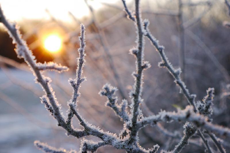 Влияние сибирского антициклона на погоду в Казахстане ослабнет
