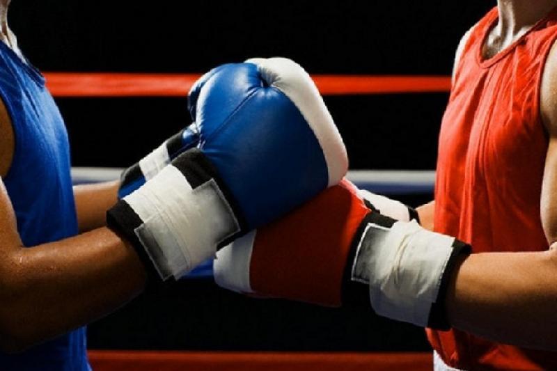 13 стран представят боксеров на турнире на Кубок Президента РК