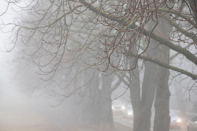 Туман и гололед ожидаются 3 января в Казахстане