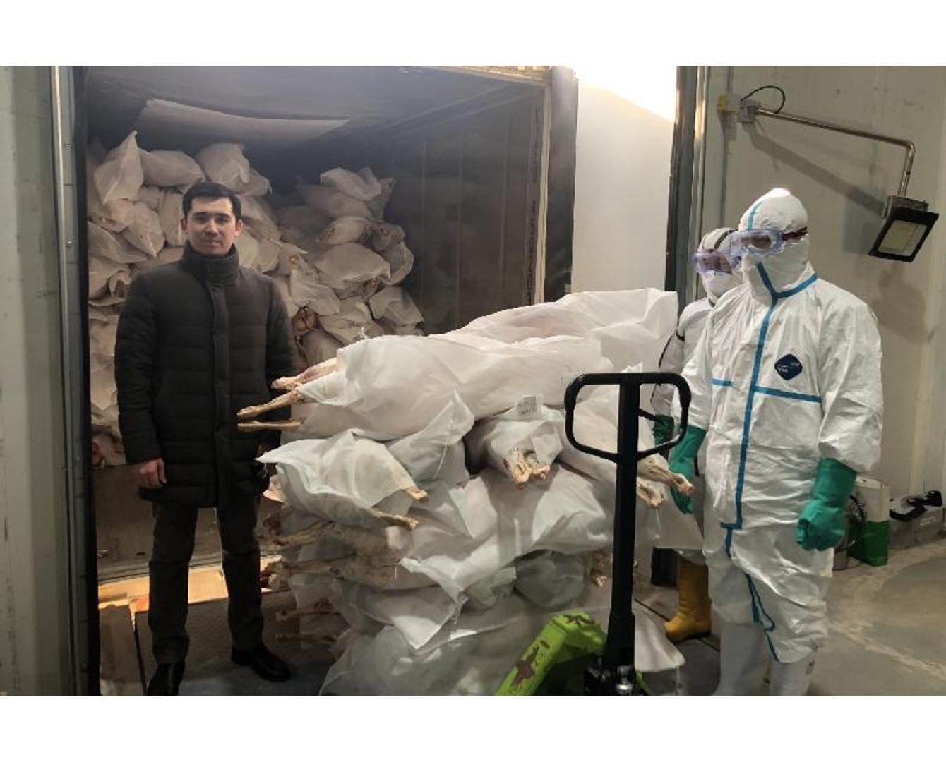 Около 1 тысячи тонн баранины поставит Казахстан в Китай