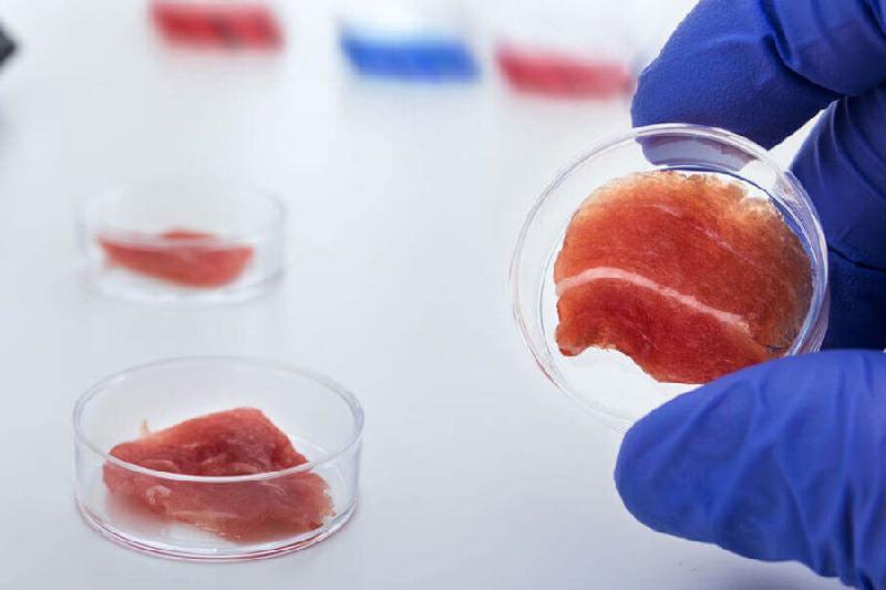 Способ проверки свежести мяса разработали ученые Казахстана и Швеции