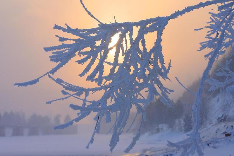 Сорокаградусные морозы придут в Северный Казахстан