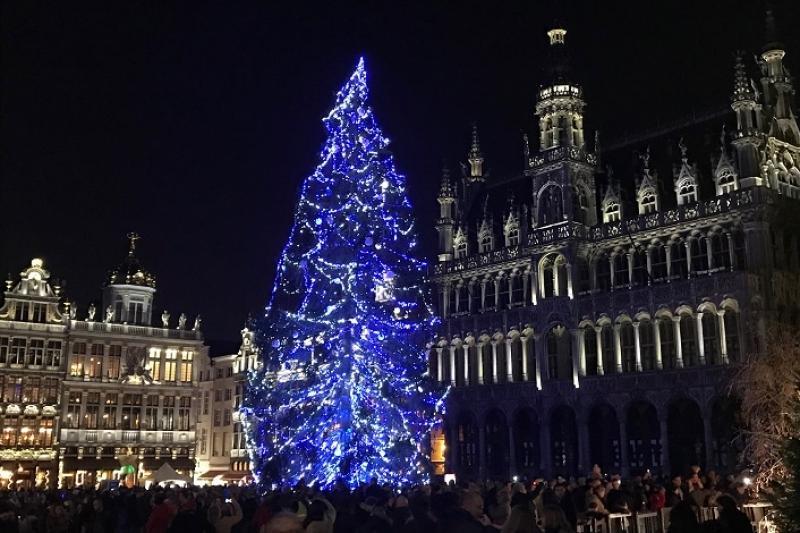 Рождественское световое шоу проходит в Брюсселе