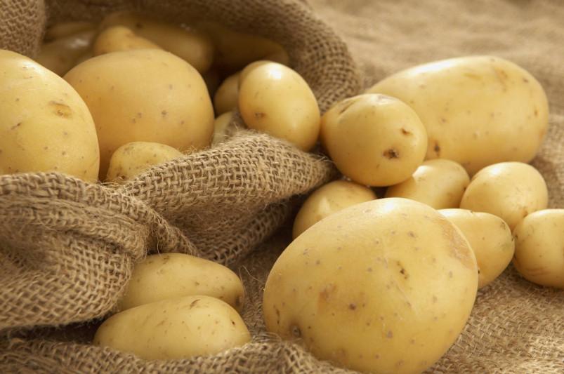 哈萨克斯坦允许进口吉尔吉斯斯坦水果和蔬菜