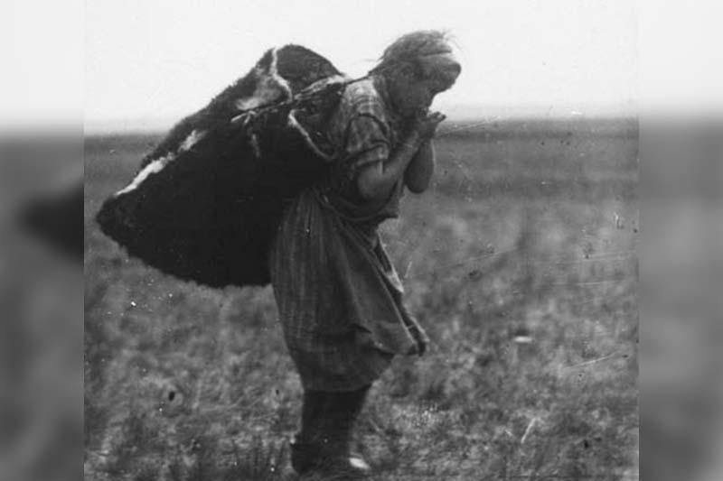 大饥荒造成哈萨克多少人口损失:一个家庭的数字