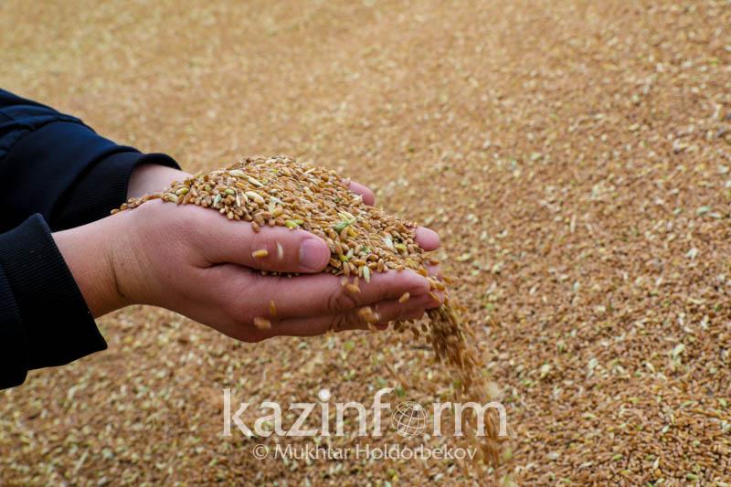 Казахстанская сельхозпродукция пользуется спросом в Китае