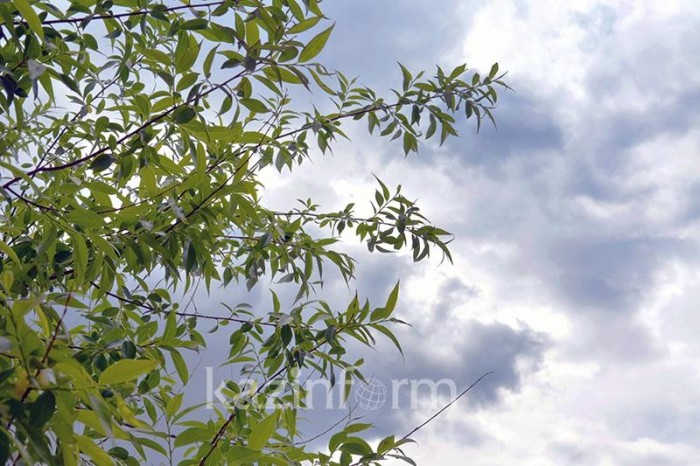 Неблагоприятные метеоусловия ожидаются 11 июня в Атырау