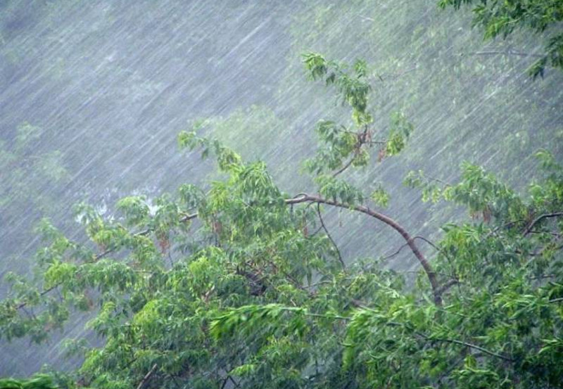 Rains to fall across Kazakhstan July 8