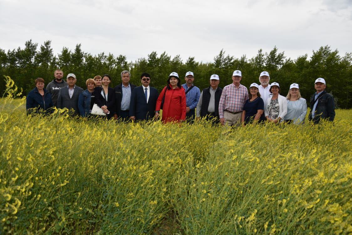 Американские ученые посетили научный центр зернового хозяйства в Акмолинской области