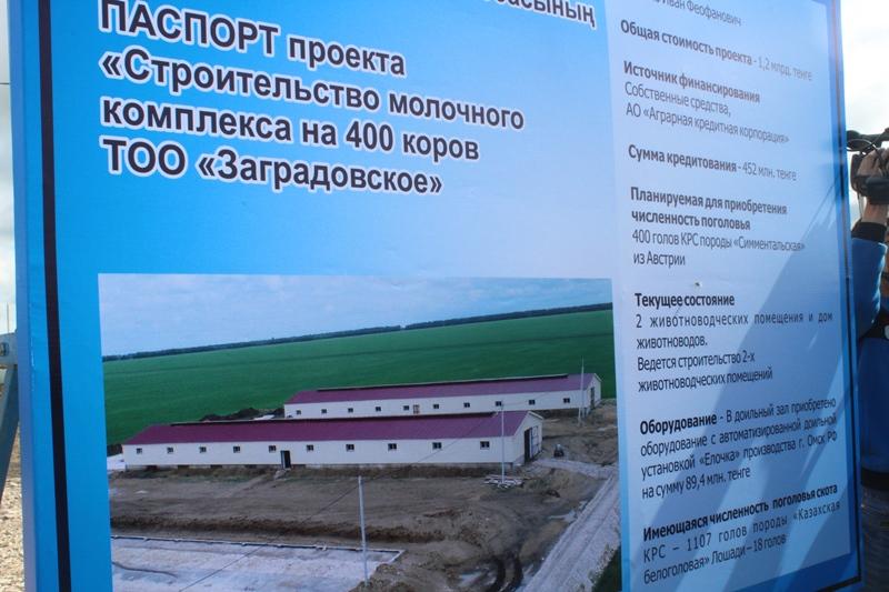 Современную молочно-товарную ферму строят в СКО