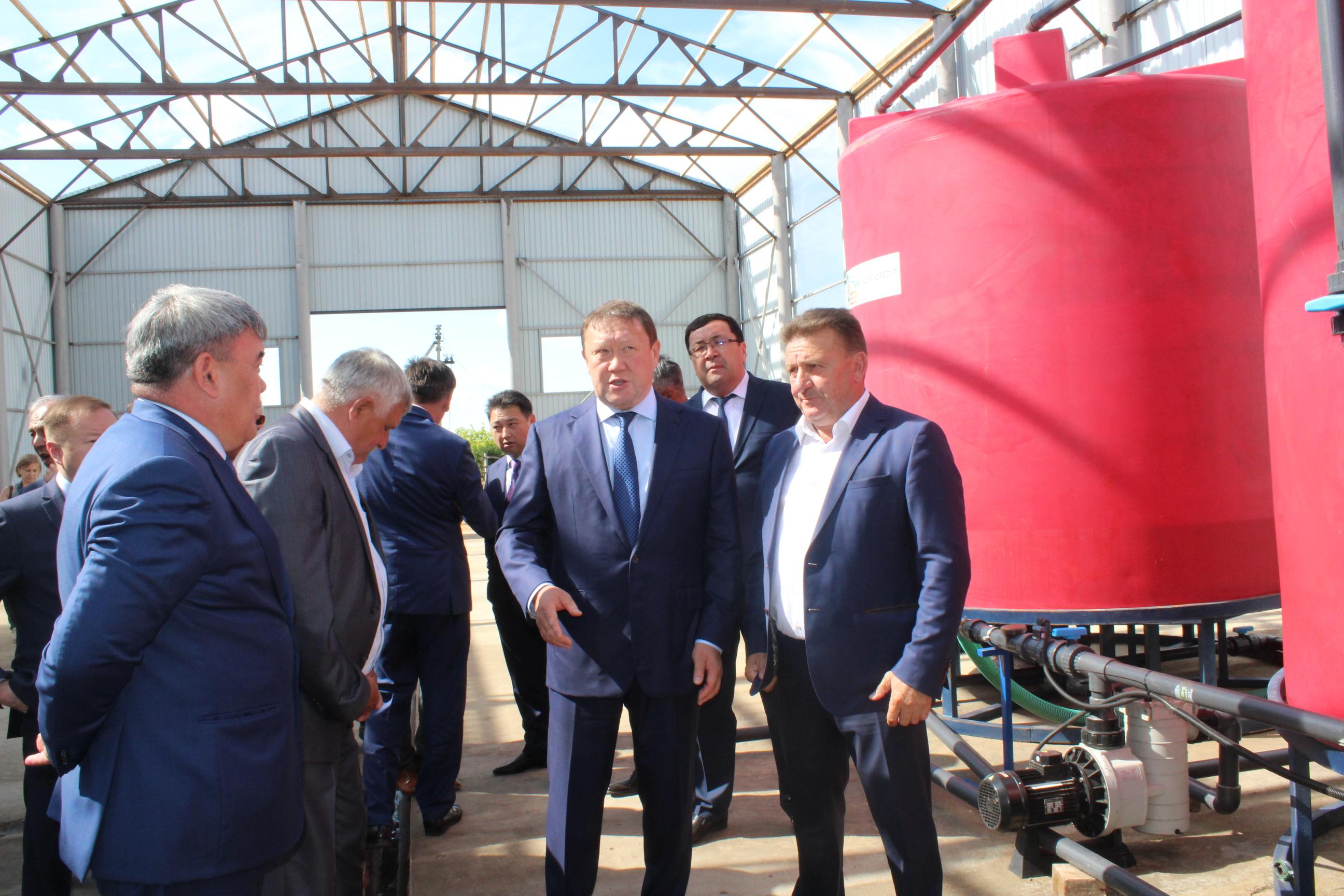 Завод по производству жидких минеральных удобрений строят в СКО