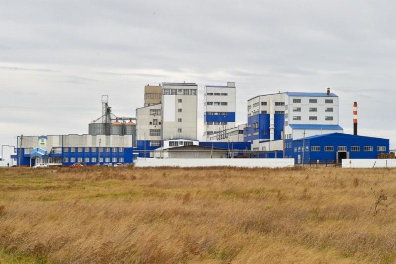 Биоэтанол начнут производить в Северном Казахстане