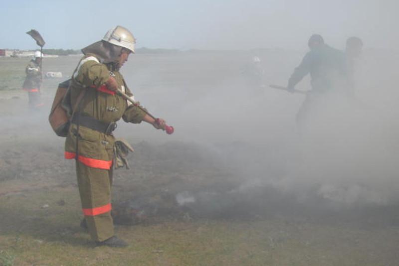 190 гектаров пшеничного поля выгорело в Жамбылской области