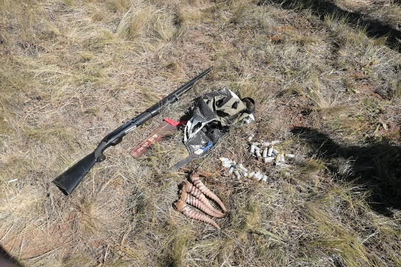 Охотников на сайгаков задержали в Актюбинской области