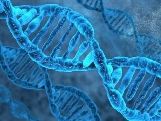 WHO expert panel paves way for strong international governance on human genome editing
